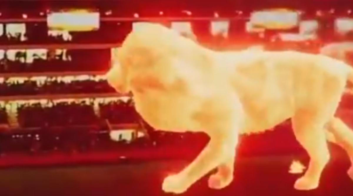 拉普拉塔球场通过3D全息影像技术,投影出猛虎为新球场揭幕-今球app官网